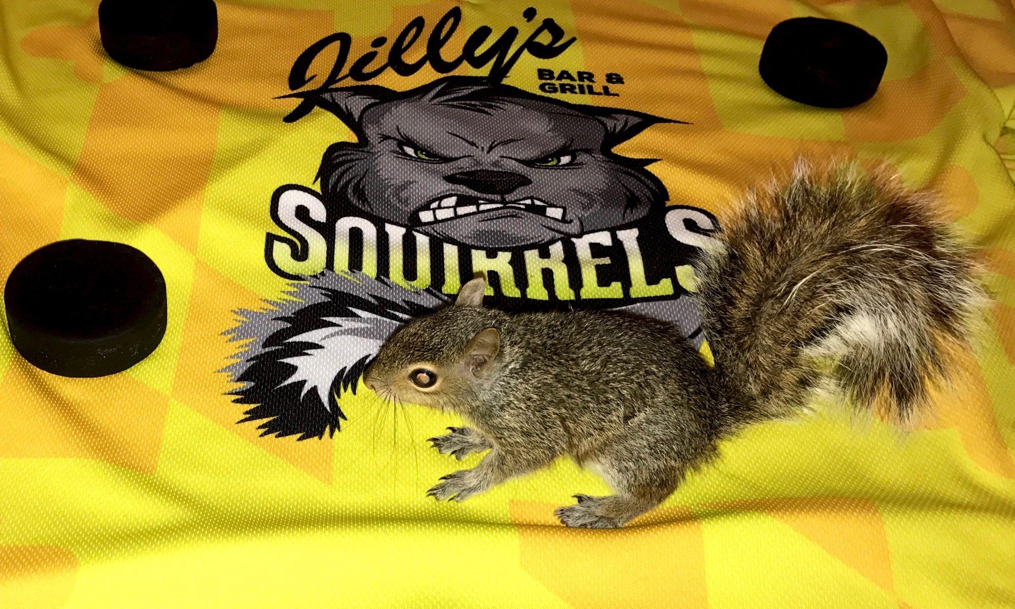 Screaming Squirrels Hockey